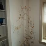 Modello designs in walls